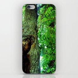 treehole2 iPhone Skin