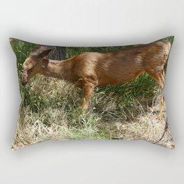 Mule Deer At Zion Park Rectangular Pillow