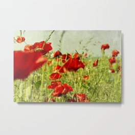 grungy illustration, field with flower of the poppy on background blue sky Metal Print