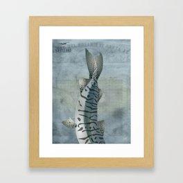 Surubí - Paraná River Fish Framed Art Print