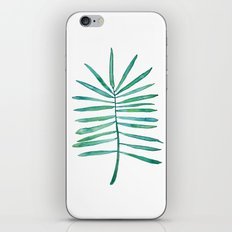 Long Palm frond iPhone & iPod Skin