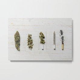 Evolution of weed Metal Print