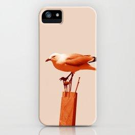 Monochrome - Seagull iPhone Case