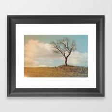 Single Tree Framed Art Print