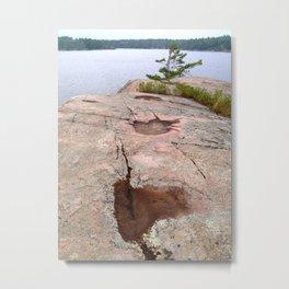 Doe Island Metal Print