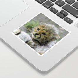 Cheetah20150908 Sticker