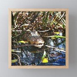 Creeper Framed Mini Art Print