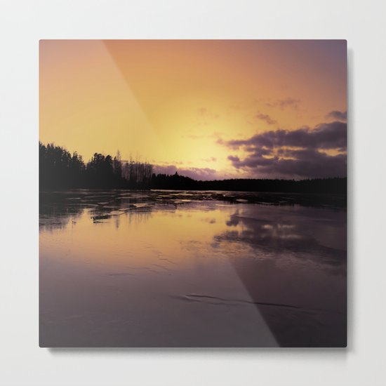 The Radiant Beauty of Nature Metal Print