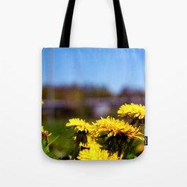 Concept flora . Dandelions in a field Tote Bag