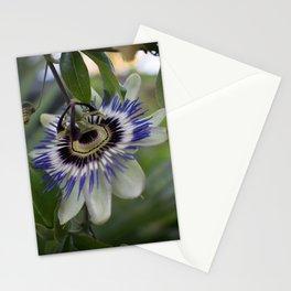 Passiflora caerulea Stationery Cards