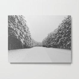 Pines  Metal Print