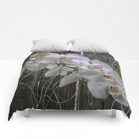 White Moth Orchid Comforters