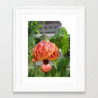 lantern Framed Art Prints featuring Lantern by Les Beehive