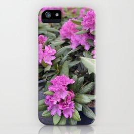 Garden Seeds Flowers iPhone Case