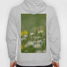 Daisy meadow Hoody