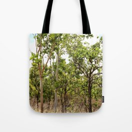 Beautiful forest regrowth Tote Bag