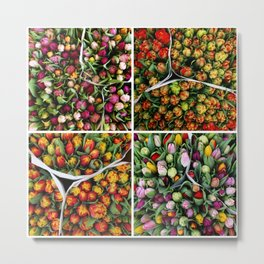 Tulips from Holland - pink, purple, red Metal Print