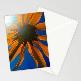 Daisy umbrella Stationery Cards
