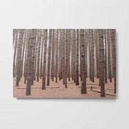 Deep In The Pines Metal Print