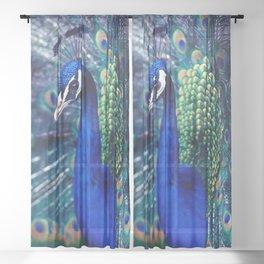 Blue Peacock Sheer Curtain