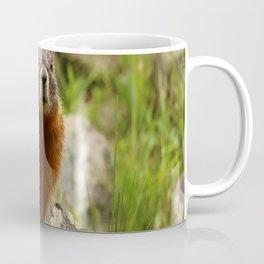On The Rocks Marmot Coffee Mug