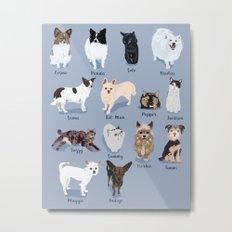 14 Dogs & Kitties Metal Print