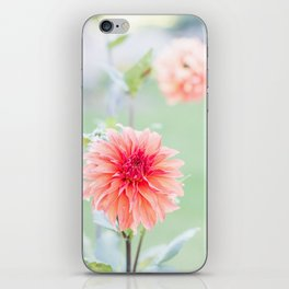 Juicy Orange Dhalia iPhone Skin