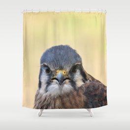 Beautiful Kestrel Shower Curtain