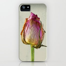 Old Rose on Paper iPhone Case