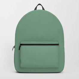 Solid Sage Green Color Backpack