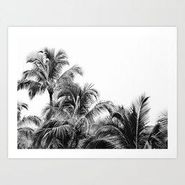 Big Island Palms - Minimal Boho Black and White Art Print