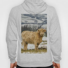 The Highland Cow Hoody