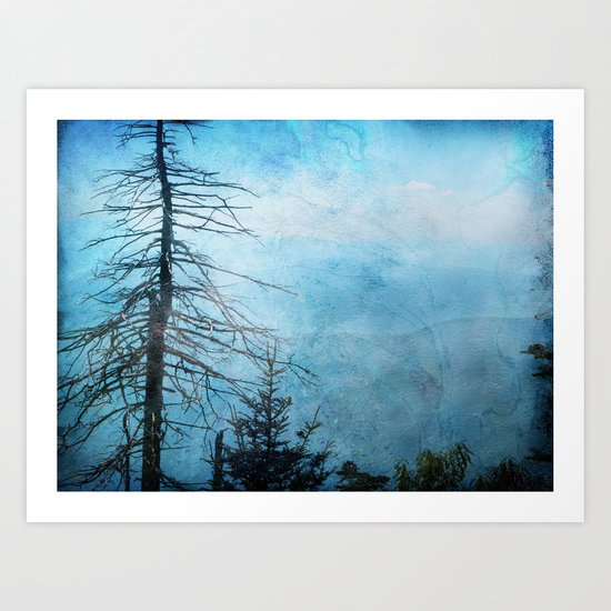 Clingman's Dome, Smoky Mountains Tennessee Art Print