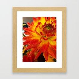 Flowers on Fire Framed Art Print