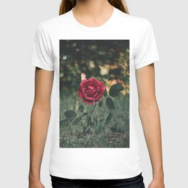 Single Red Rose In A Grassy Field With Bokeh Maple Leaves In The Background T-shirt