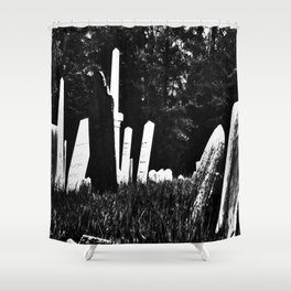 Womb To Tomb Shower Curtain