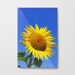 Bold Sunflower 2 Metal Print