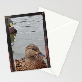 Framed Duck Stationery Cards