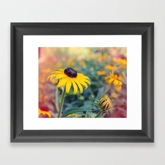 Flower series 04 Framed Art Print