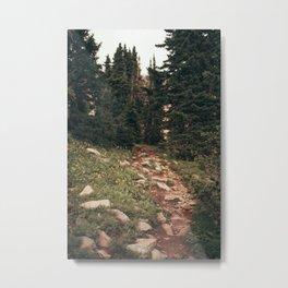 Pathways. Metal Print
