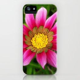 Dipladenia iPhone Case
