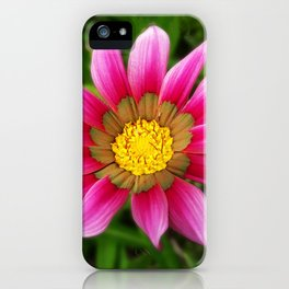 Dipladenia iPhone Case