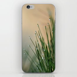 RAINDROPS ON GRASS iPhone Skin