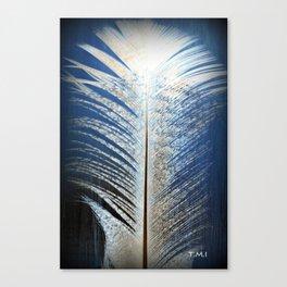 Feather Vignette Canvas Print