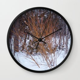 Bright Young Tree -  Fire Bush Wall Clock