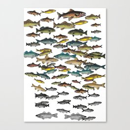 Fish Beach Nautical multicolor and black and white Canvas Print