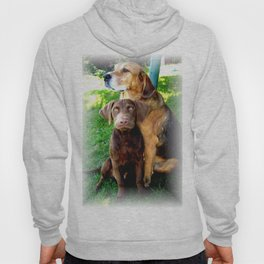 Ain't Nothing But A Hound Dog Hoody