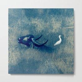 Water Buffalo and Bird Metal Print