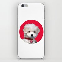 valentine iPhone & iPod Skins featuring Valentine by Herzensdinge