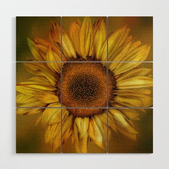 Sunflower - Vintage by judypalkimas